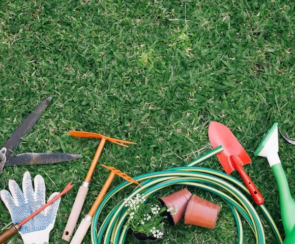 Ferramentas para Jardim: Conheça as 4 ferramentas básicas