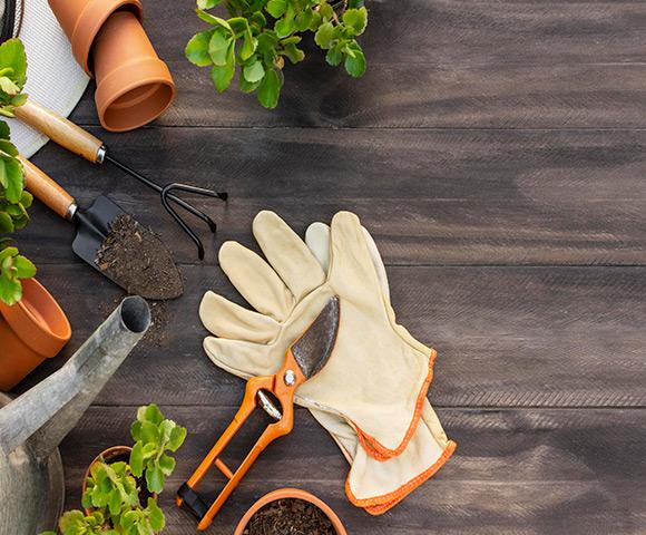 Dúvidas sobre jardim: 6 respostas sobre a área | Blog Copafer